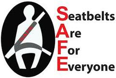Seatbelts are For Everyone