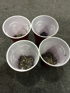 Each of the team captains got a cup of glitter